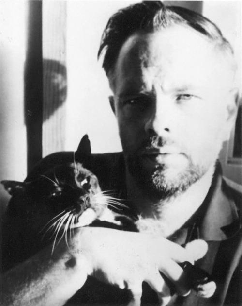 Pkdick_and_cat